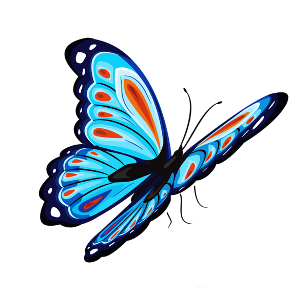 Blue_and_Red_Butterfly_PNG_Clipart_Picture